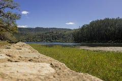 Laguna Del Pino Imagem de Stock