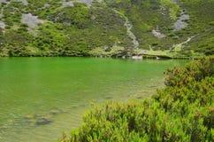 Laguna del Pozo Neger & x28; Burgos Spain& x29; 2 Royaltyfri Foto
