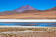 Laguna Desert, Bolivia Stock Photography