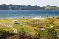 Laguna di Bilene nel Mozambico Immagini Stock Libere da Diritti
