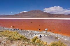 Laguna di Colorado in Bolivia Fotografia Stock Libera da Diritti