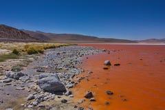 Laguna di Colorado Laguna Colorada in Bolivia Fotografia Stock