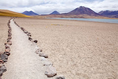 Laguna di Miscanti, Cile Fotografia Stock