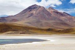 Laguna di Miscanti, Cile Fotografia Stock Libera da Diritti