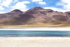 Laguna di Miscanti, Cile Immagine Stock Libera da Diritti