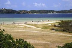Laguna di Uembje - Bilene - Mozambico immagine stock