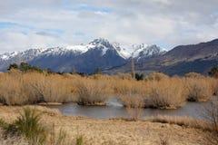 Laguna e montagne di Glenorchy Fotografia Stock