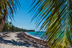 Laguna e spiaggia selvaggia con acqua blu fotografie stock