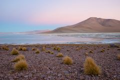 Laguna e vulcano sul plateau Altiplano, Bolivia fotografia stock libera da diritti
