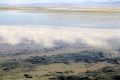 Laguna en Salar de Atacama, Chile de Chaxa Imágenes de archivo libres de regalías