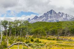 Laguna Esmeralda trail with forest and mountains. Ushuaia, Patagonia, Argentina royalty free stock photo