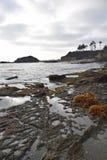 Laguna Getijdenpools Stock Foto