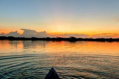 Laguna Grande, National Park Cuyabeno Royalty Free Stock Image
