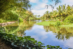 Laguna hawaiana Kauai Hawai Fotografia Stock