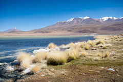 Laguna Hedionda Royalty Free Stock Images