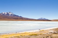 Laguna Hedionda view, Bolivia. Laguna Hedionda landscape,Bolivia. Beautiful bolivian panorama. Blue water lagoon Royalty Free Stock Photo