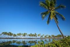Laguna hermosa con las palmeras, cielo azul Imagenes de archivo