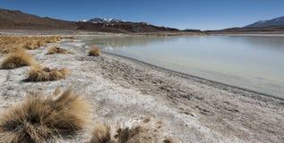Laguna Honda en ` profundo de la laguna del ` inglés en el reserva Eduardo Avaroa - Bolivia de Lipez Altiplano del sud fotos de archivo libres de regalías