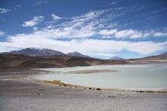 Laguna Honda i den Atacama öknen i Bolivia Fotografering för Bildbyråer