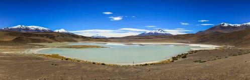 Laguna Honda panorama, Altiplano, Bolivia Arkivfoto
