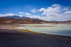 Laguna Honda in sud Lipez Altiplano reserva, Bolivia Stock Images