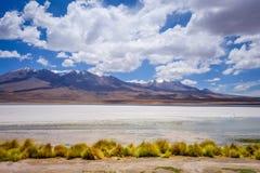 Laguna Honda in sud Lipez Altiplano reserva, Bolivia Royalty Free Stock Photo