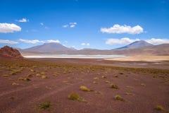 Laguna Honda in sud Lipez Altiplano reserva, Bolivia Royalty Free Stock Images