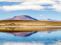 Laguna Kara salt sjö med reflexionen av berget, Eduardo A Royaltyfri Bild