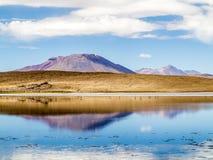 Laguna Kara zout meer met bezinning van de berg, Eduardo A Royalty-vrije Stock Afbeelding