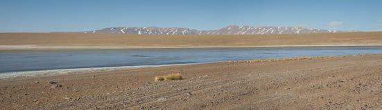 Laguna Kollpa Kkota Collpa Laguna, Sud Lípez Province, Potosí Department Stock Photo