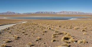 Laguna Kollpa Kkota Collpa Laguna, Sud Lípez Province, Potosí Department Royalty Free Stock Photos