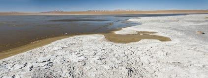 Laguna Kollpa Kkota Collpa Laguna, Sud Lípez Province, Potosí Department Royalty Free Stock Image