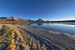 Laguna Lejía and mountains. Laguna Lejía with mountains in the background. This lagoon is located in the Atacama desert near Lascar volcano in Chile royalty free stock image