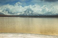 Laguna lejia (bleach lake) in Atacama region Stock Image