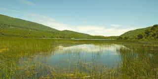Laguna Malleco w Tolhuaca parku narodowym Chile obraz stock
