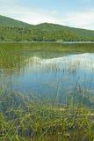 Laguna Malleco w Tolhuaca parku narodowym Chile fotografia stock