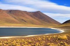Laguna Miniques озеро рядом с laguna Miscanti, расположенным в altiplano северной Чили Стоковые Фотографии RF