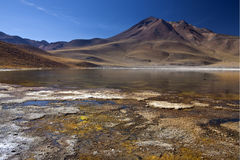 Laguna Miscanti in the Atacama Desert - Chile Royalty Free Stock Photo