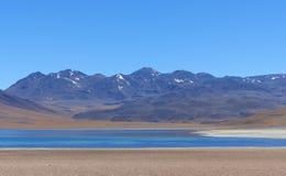 Laguna Miscanti, Atacama pustynia, Chile Obrazy Stock