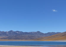 Laguna Miscanti, Atacama pustynia, Chile Obraz Stock