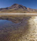 Laguna Miscanti - Chile. Laguna Miscanti in the High Andes Mountains in the Atacama Desert in Northern Chile Royalty Free Stock Photo