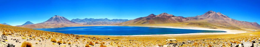 Panorama of Laguna Miscanti and volcanos Miniques, Chile Royalty Free Stock Photos