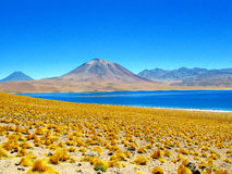 Laguna Miscanti and volcano Miniques Chile Stock Photo