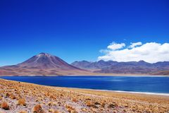 Laguna Miscanti e Volcan Miniques Fotografia Stock