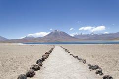 Laguna Miscanti en Volcan Miniques stock foto