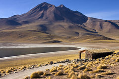 Laguna Miscanti - Andes Mountains - Atacama Desert Royalty Free Stock Image