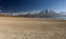 Laguna Miscanti in the High Andes Mountains in the Atacama Deser Royalty Free Stock Photo