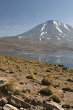 Laguna Miscanti in the High Andes Mountains in the Atacama Deser Royalty Free Stock Image