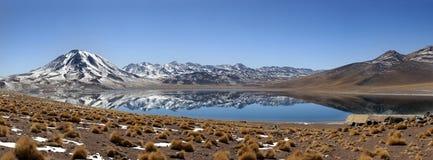 Laguna Miscanti i San Pedro de Atacama Arkivbild