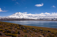 Laguna miscanti lake with volcano Stock Photos